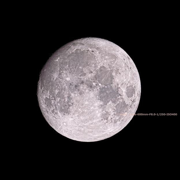 Photos: 今夜の月(9/19 22:40)