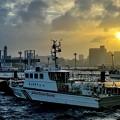 Photos: お台場の港