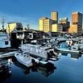 Photos: 都会の漁港