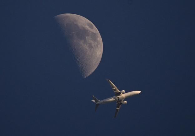 上弦の月と