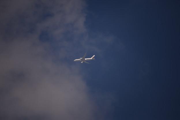 鶴丸 雲へ