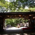 小石川後楽園 西門