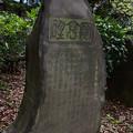 弘前舊藩士龍岬藤林君之碑