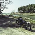 250TR 河口