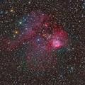 とも座の散光星雲NGC2467