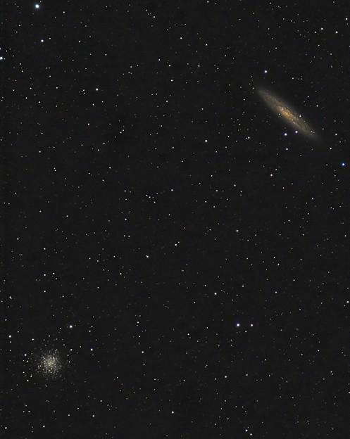N253andN288 Amazon激安500mmF6.3望遠レンズにて