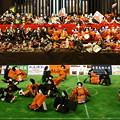 Photos: 郡上 雛祭り  1