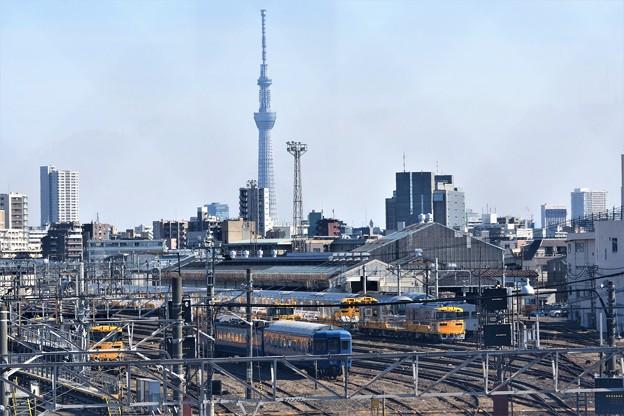 Photos: 尾久車両センターと東京スカイツリー