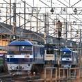 Photos: 機関車待機ちう