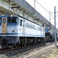 Photos: EF65 2127カラシ牽引シキ801