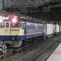 EF65 2097牽引4073レ小山待避