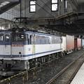 Photos: EF65 2063牽引4073レ