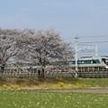 Photos: 春の思川橋梁を行くリバティ
