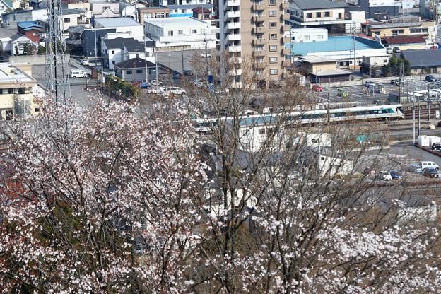 春の新鹿沼駅界隈