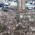 Photos: 春の新鹿沼駅界隈
