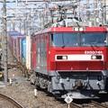 EH500-61牽引3054レ小金井通過