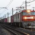Photos: EH500-38牽引3057レ