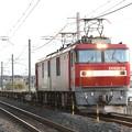 Photos: EH500-56牽引8063レ