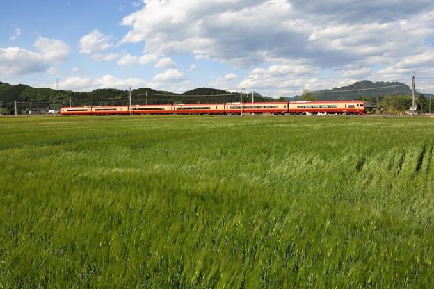 麦畑に赤い特急