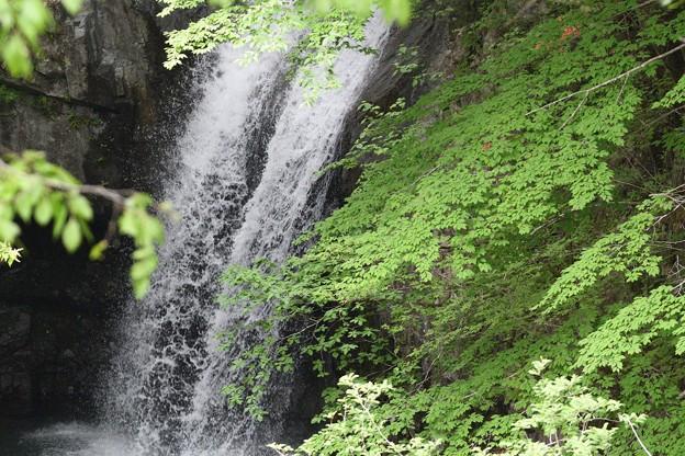 大芦渓谷の大滝