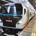 E257系特急湘南