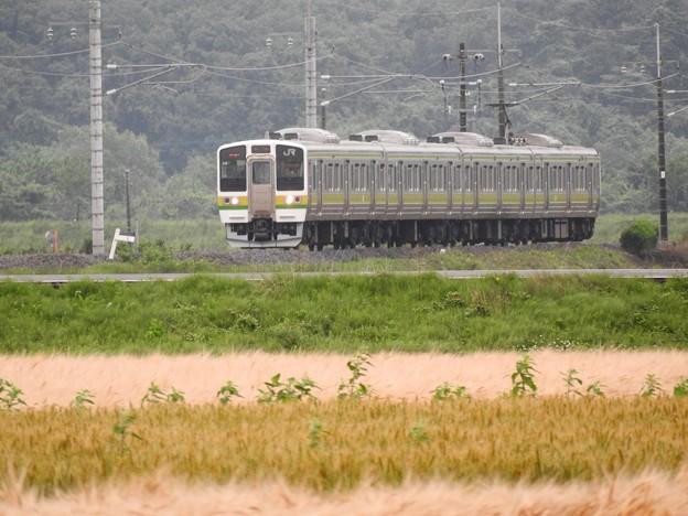 211系矢絣ラッピング両毛線高崎行き