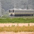 Photos: 211系矢絣ラッピング両毛線高崎行き