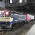 Photos: EF65 2081牽4073レ小山11番停車中