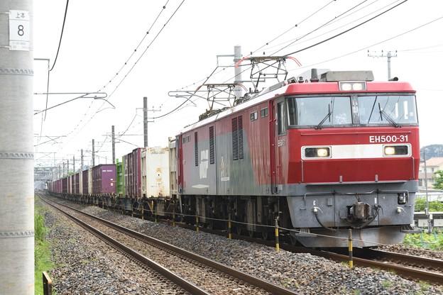 Photos: EH500-31牽引3055レ