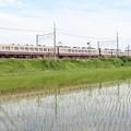 東武6050型リバイバル色