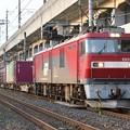 Photos: EH500ラストナンバー81号機牽引3058レ