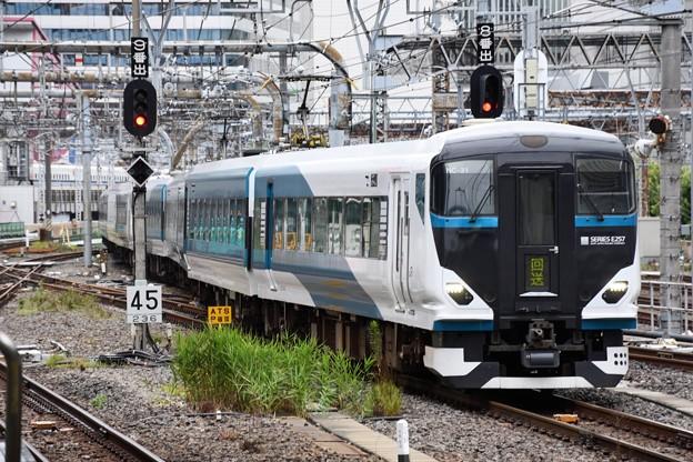 E257系特急踊り子12号東京8番到着