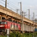 Photos: EH500-62牽引8063レ