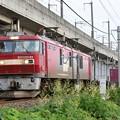 Photos: EH500-81牽引3057レ