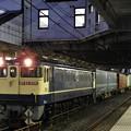 Photos: EF65 2091牽引4073レ小山11番待避中