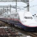 Photos: E4系Maxたにがわ316号・とき316号大宮入線