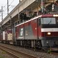 Photos: EH500-1牽引3050レ