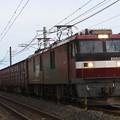 Photos: EH500-6牽引8063レ