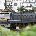雨上がりの貨物駅にEF66 27号機