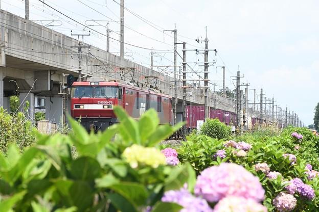 Photos: EH500-76号機