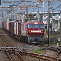 Photos: EH500-31牽引4088レ雀宮通過