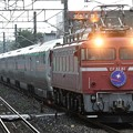 Photos: EF81 81牽引E26系カシオペア紀行号青森行き