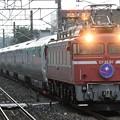 EF81 81牽引E26系カシオペア紀行号青森行き