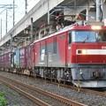 Photos: EH500-42牽引4088レ