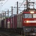 Photos: EH500-33牽引3057レ