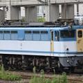 EF65 2127号機カラシ宇都宮貨物(タ)休息中