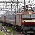 EH500-8号機牽引カンガルーライナー4059レ