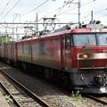Photos: EH500-19牽引94レ黒磯6番間もなく発車