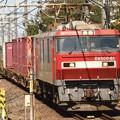 EH500-61牽引3050レ栗橋通過