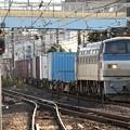 EF66 113牽引4093レ